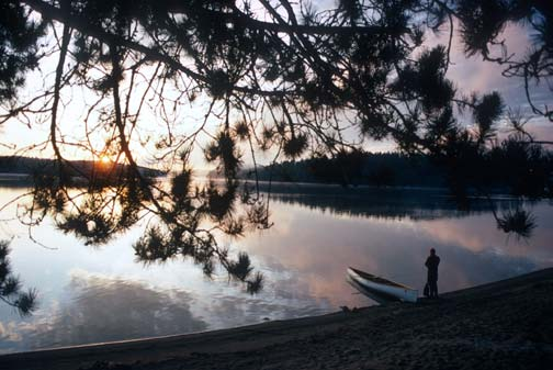 Lone canoer stands in the distance near his canoe on the beach of a tranquil lake watching the sunset. An arching tree branch frames the foreground.