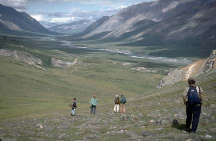 A small group of hikers descending into a massive valley covered in arctic tundra.