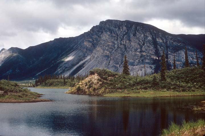 A small lake surrounded by low tundra and sparse spruce trees, near the base of a high vertical rock face in the background.