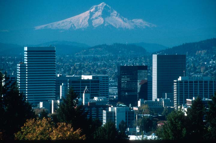 A telephoto image of a massive snowcapped peak looming in the distance, over the skyscrapers and development of a large city.