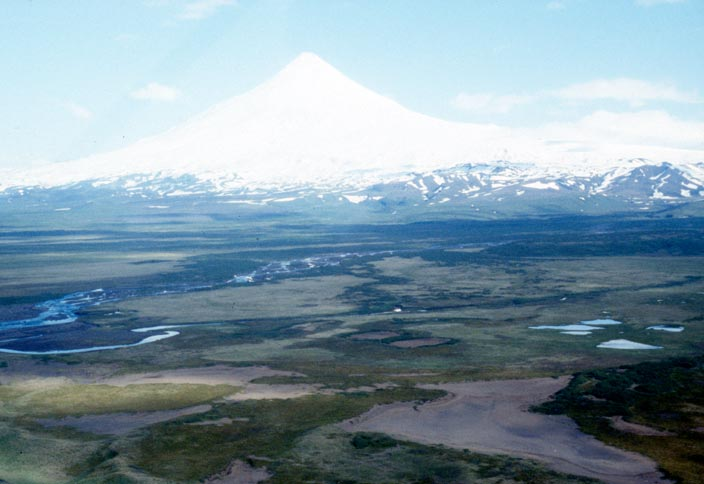 Looking across a large river plane, to a tall conical volcano in the distance, covered in a fresh coat of white snow.