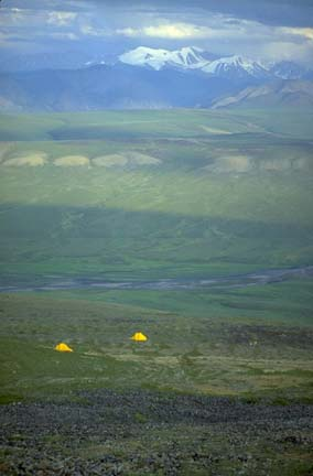 Two yellow tents dwarfed by an expansive alpine plateau, massive snowcapped mountains rise in the far distance.