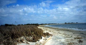 A panoramic image of an open beach scene, a strip of white sand bordered by marshy grass on one side and ocean water on the other.